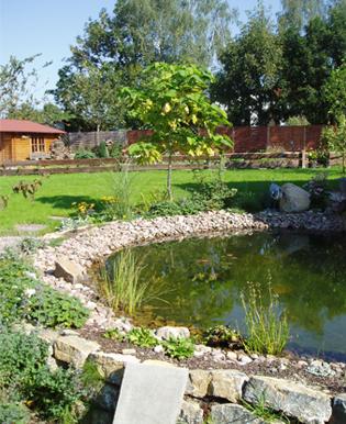 Natur und garten garten und landschaftsbau ingo for Pflanzengestaltung garten